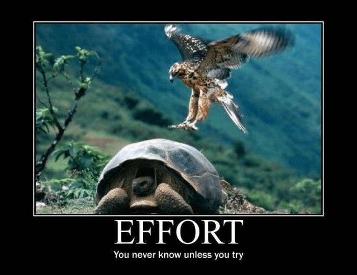 Always Make an Effort!