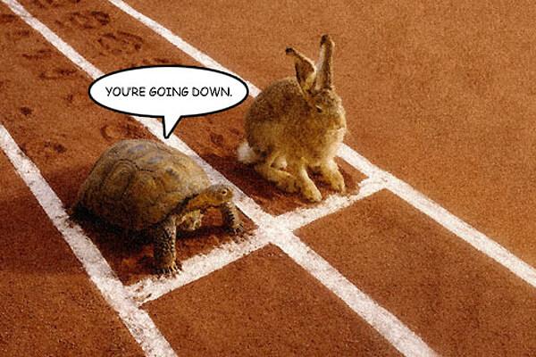 Marathon Not a Sprint