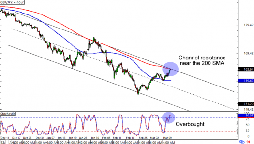 Forex trend-trade7