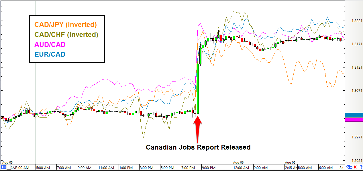 Forex analyst jobs in canada