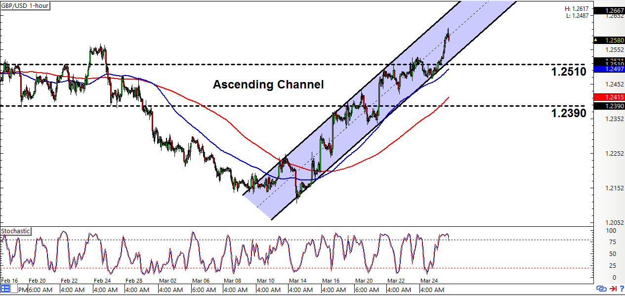 Usd chf live forex chart