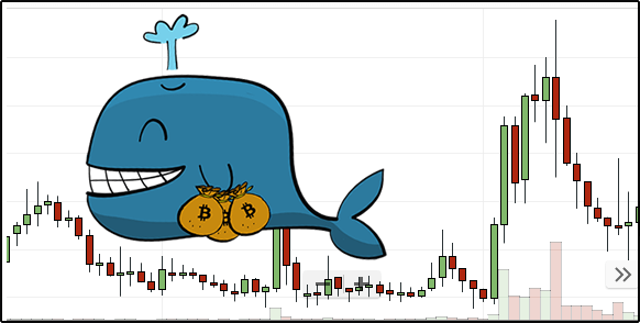 How to buy cryptocurrency like a whale